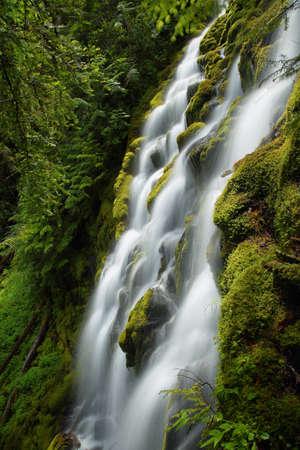 Beautiful Proxy falls in Mc Kenzie pass, Oregon.
