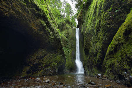Lower falls in Oneonta Gorge. Columbia River Gorge, Oregon