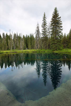 mount hood national forest: Little crater lake in Oregon, USA