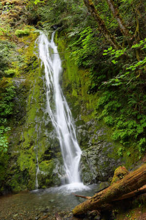 sol duc river: Madison Falls, Olympic National Park, USA