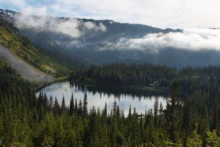 Scenic view of reflection lake in Mount Rainier national park, Washington, USA
