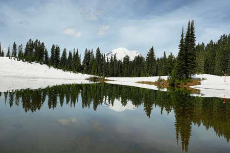 View of Mount Rainier reflected in Tipsoo lake, Washington, USA