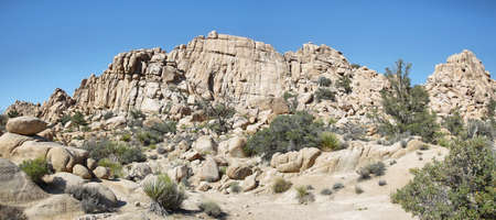 joshua tree national park: Boulders and cactus in Joshua Tree National Park, California. Stock Photo
