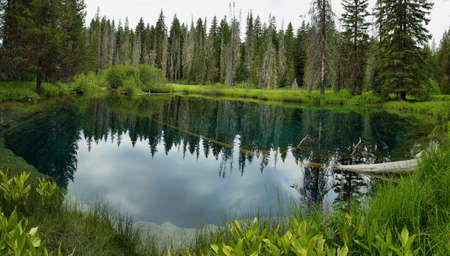 mt hood national forest: Little crater lake in Oregon, USA