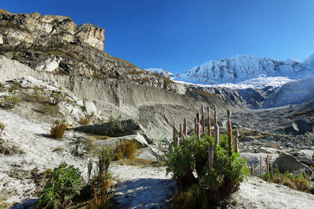 m: Llaca lagoon (4474 m) in the peruvian Andes and Ocshapalpa peak (5888 m), Peru Stock Photo