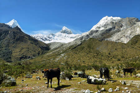 ancash: Artesonraju peak (6025m), Ancash province, Peru Stock Photo
