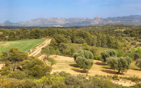 Mountains and fields in Els ports de Beseit near Arnes village, Spain Stockfoto