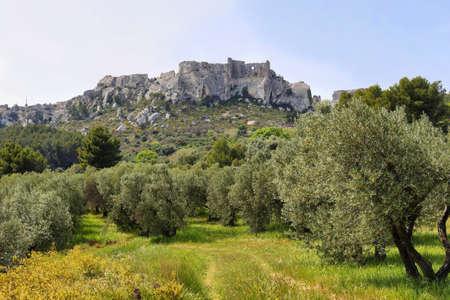 Skyline of renowned provencal village Les Baux de Provence in Spring, France