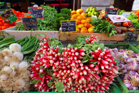 Summer harvested red radish and other vegetables in the market. Growing organic vegetables.