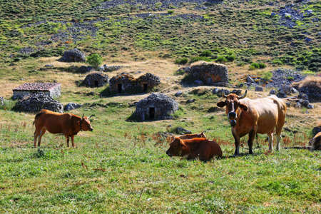 Traditional shepherd's buildings found in Somiedo Nature Reserve, Asturias, Spain. They are scattered shacks across the mountains. Photo taken in Sousas Valley