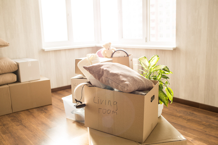 Picture of overfull box. There are different clothes, stuff and other things in it. Also these is a green domestic plant behind the box. These things stands near window in a bright room. 스톡 콘텐츠