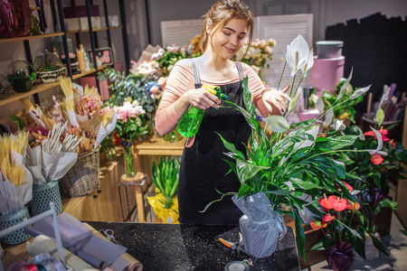 Cheerful young florist stand and spray some water on plant. She wears black apron. Young woman stand in room full of flowers and plants.