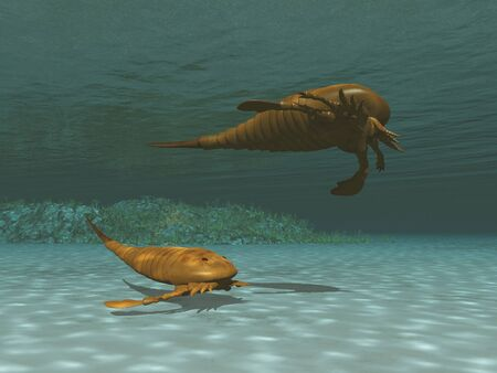 3d illustration of two eurypterids