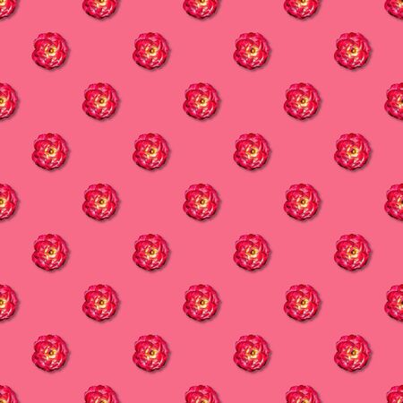 Vine red rose seamless pattern on pink background. Top view. Flat lay. Floral pattern