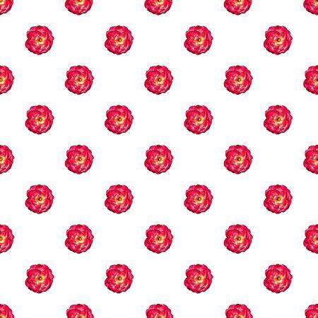 Vine red rose seamless pattern. Top view. Flat lay. Floral pattern Stock fotó