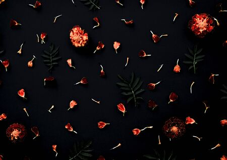 Marigolds on a black background. Pattern with Marigold flowers, petals and leaves on dark black background. Flat lay. Stok Fotoğraf