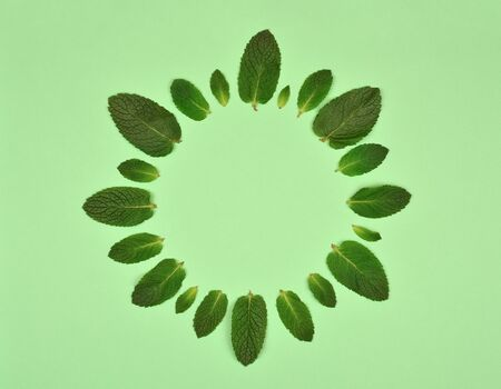 Floral round frame with ?int leaves isolated on mint background. Set of peppermint leaves. Flat lay. Top view. Copy space