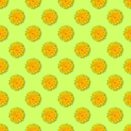 Seamless yellow flower pattern. Dandelion flower summer background close up. Stock Photo