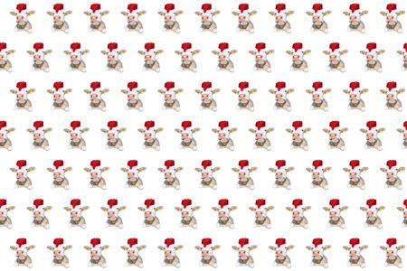 Funny white bull isolated in Christmas hat pattern. Spotted Cow portrait isolated on white. Farm animals.
