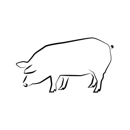 Pig icon. Outline vector illustration. Hand drawn style. Farm animals. Logo of pig full length isolated on white.