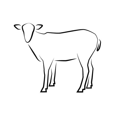 Sheep icon. Outline vector illustration. Hand drawn style. Farm animals. Logo of Grazing sheep full length isolated on white.