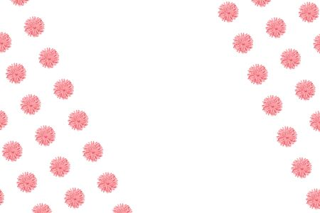 Pink Chamomile or gerbera isolated on white diagonal pattern with copy space. Summer flowers Standard-Bild