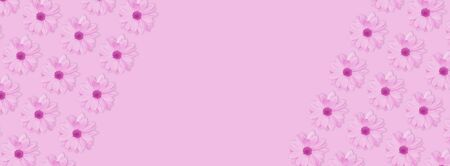 Monochrome pink flower floral long banner or poster. Chamomile or chrysanthemum flower pattern. Copy space 免版税图像