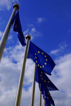 line of flags of European Union