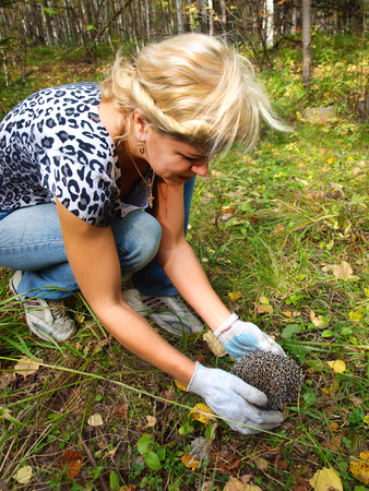 Pretty young blond woman in autumn forest hedgehog found