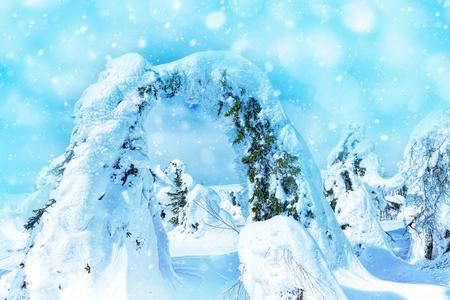 tremendous: Beautiful winter wonderland during the sunny day. Winter landscape Stock Photo