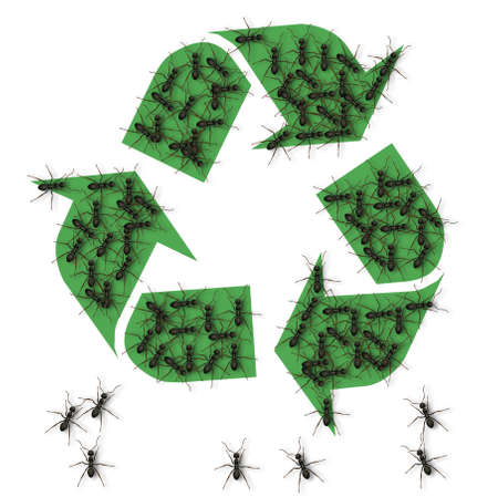 a number of black ants forming recycle symbol shape with their bodies Stock Photo - 14384457