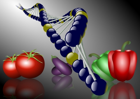 a group of different kinds of vegetables and DNA chain