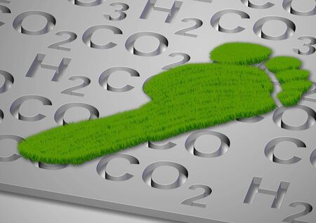 carbon footprint: A footprint made from grass with carbon compounds formulas under it Stock Photo