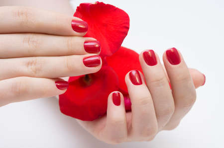 Womens Hands And Amazing Natural Nails Ideal Manicure With Stock