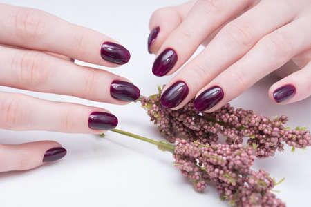 Beautiful manicure and nail art. Natural nails and gel polish. Stock Photo