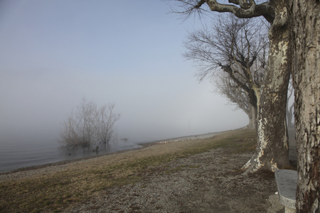 Foggy island in the morning Imagens