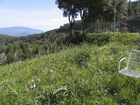 Elba island Archivio Fotografico - 102981480