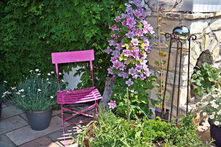 ピンクのクレマチスとピンクの庭の椅子