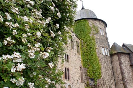 historically: Sababurg Castle in Hofgeismar, Hesse, Germany