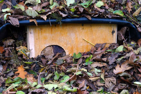 wintering: Hedgehog House for wintering