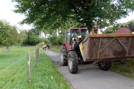 front loader: Front loader with Schferhund Editorial