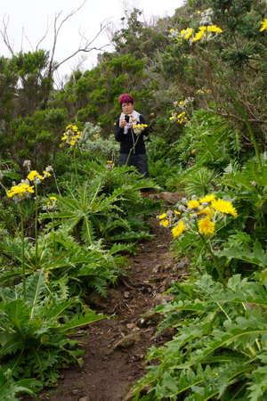 migrate: Walk in the Anaga mountains around Chamorga, Tenerife, Canary Islands, Spain