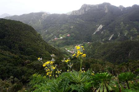 migrate: Walk in the Anaga mountains around Chamorga, Anaga, Tenerife, Canary Islands, Spain