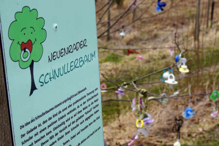 teat: Pacifier tree - tree, vollgehngt with stored pacifiers, Neuenrade, North Rhine-Westphalia, Germany Stock Photo
