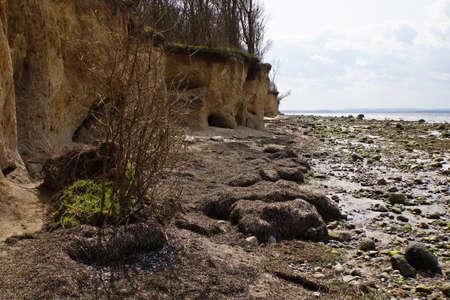 mecklenburg  western pomerania: Steep coast beach in Timmendorf Insel Poel Mecklenburg Vorpommern Germany