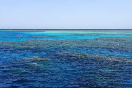 water surface: Coral reef in the Red Sea Egypt,