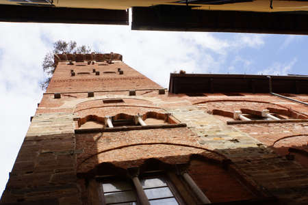 lucca: Guinigi Tower, Lucca, Tuscany, Italy