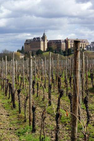 viniculture: Ursuline monastery on the mountain calvaria, Ahrweiler, Rheinland-Pfalz, Germany