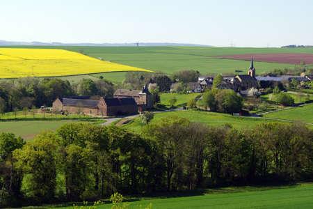 gelb: landscape near Mechernich, Nordrhein-Westfalen, Germany