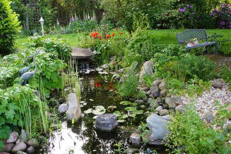 oriental poppy: Turkic poppy (Papaver orientale) in the garden pond, Nordrhein-Westfalen, Germany Stock Photo